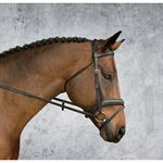 Crown Padded Flash Bridle