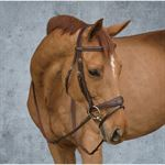 DYON ANATOMIC BRIDLE