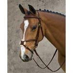 Dy'on Figure-8 Bridle