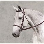 Ovation Ultra Raised Padded Fancy-Stitched Bridle