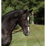 Wellington Premier Norfolk Wide Nose Bridle