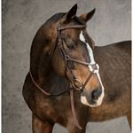 Dover Saddlery Classic Figure 8 Bridle