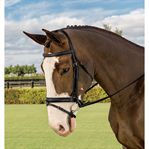 Vespucci Voyager Raised Flash Dressage Bridle