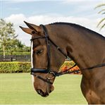 VESPUCCI ROLLED DRESSAGE BRIDL