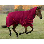 Shires StormCheeta Combo Turnout Blanket