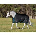 Rider's by Dover Saddlery Heavyweight Turnout Blanket