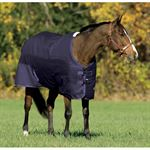 Riders International Heavyweight Turnout Blanket