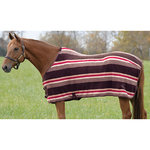 Pessoa Polar Fleece Cooler in Stripes