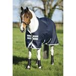 Amigo Medium Weight Pony Turnout Blanket