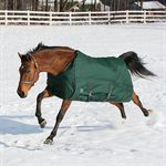 Rider?s International Hug Lightweight Turnout Blanket