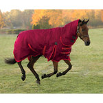 Shires StormCheeta Regular Neck Turnout Blanket