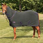 NORTHWIND DOG BLANKET