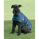 RIDERS INT'L DOG TURNOUT SHEET