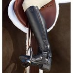 Ariat® Stable Half Chaps?