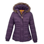 JOULES HILLER PADDED JACKET