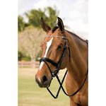 HDR FANCY CRYSTAL BROWBAND