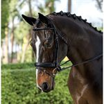 Dover Saddlery Premier Rolled Dressage Bridle