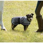 DVR PLAID WOOL DOG DRESS SHEET
