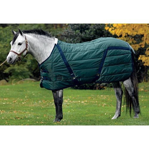 Riders International Pony Stable Blanket