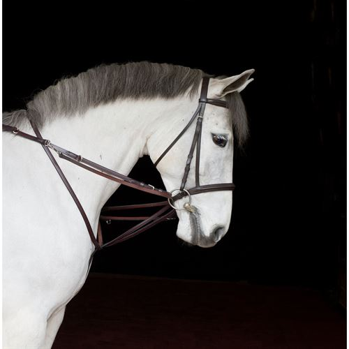 German Martingale Rein Set