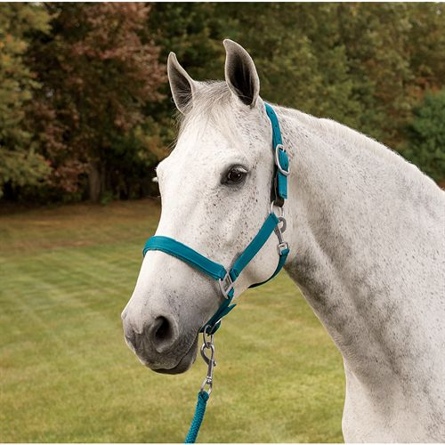 CNTR FLEECE PADDED HALTER W LD