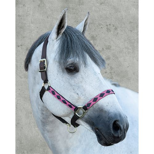 SUFFOLK ARGYLE BREAKAWY HALTER