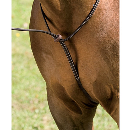 CROWN RAISED MARTINGALE