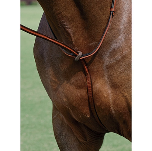 Vespucci Plain Raised Standing Martingale
