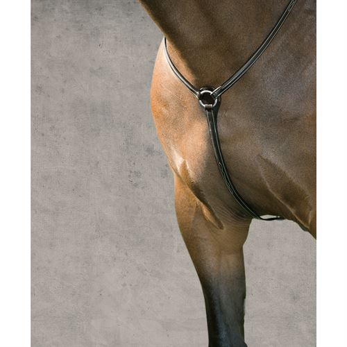 CROWN HUNTER BRIDLE