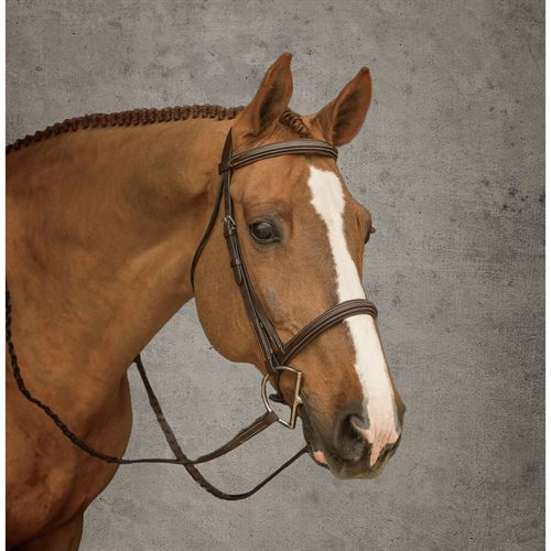Crown Padded Stitched Bridle