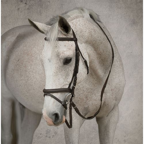 SUFFOLK FLASH BRIDLE
