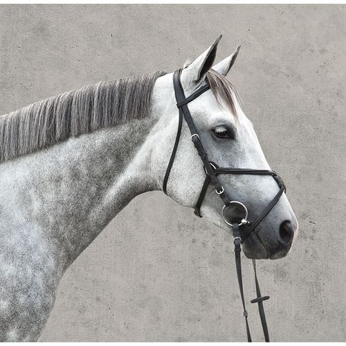 VESP RAISED FIGURE 8 BRIDLE