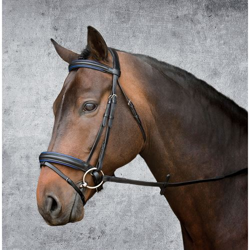 Suffolk Premier Dressage Bridle