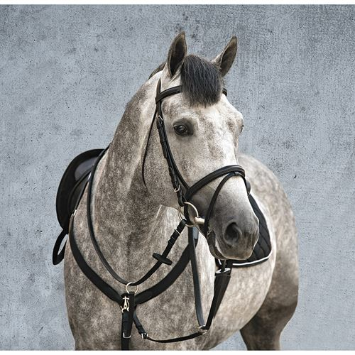 HORSEWARE AMIGO EVENT BRIDLE