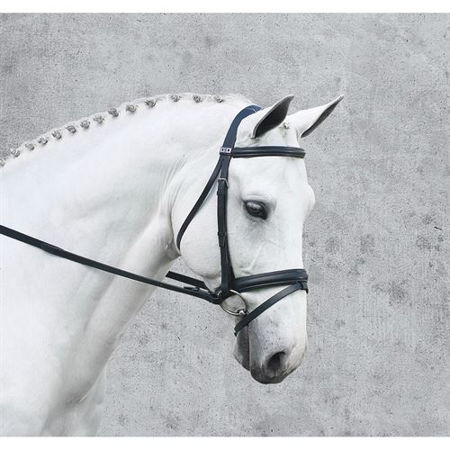 Stubben Classical Dressage Bridle