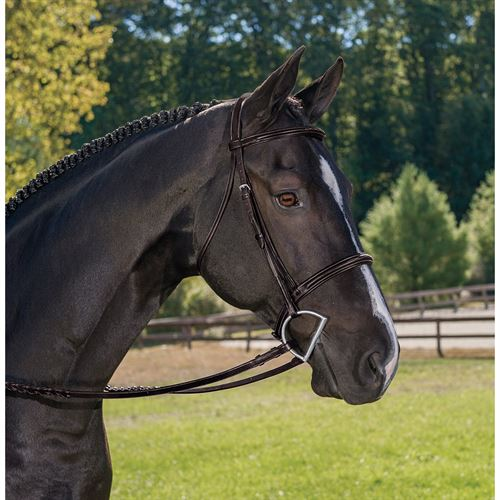 Showmark  Padded Fancy Stitched Bridle