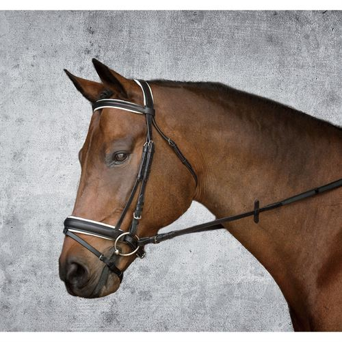 Crown Premier Dressage Bridle