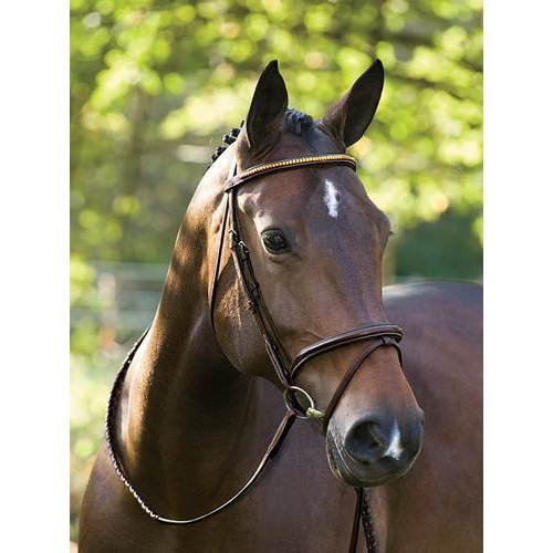 Showmark Deluxe Flash Bridle with Clincher