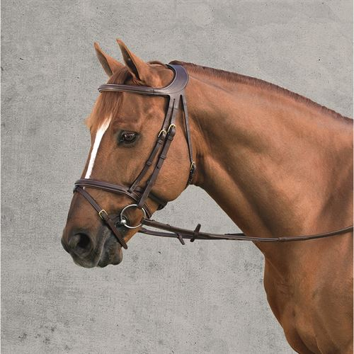DYON DIFFERENCE BRIDLE