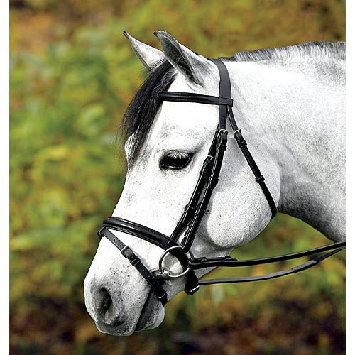 WARENDORF PONY DRESSAGE BRIDLE
