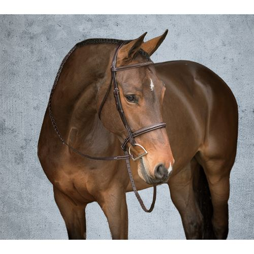 Showmark Deluxe Hunter Bridle
