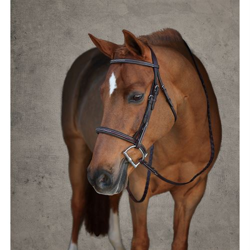Showmark Padded Fancy Pony Hunter Bridle