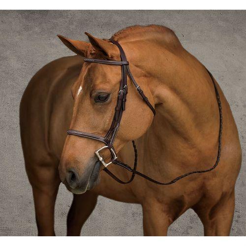 Showmark Fancy Raised Pony Hunter Bridle