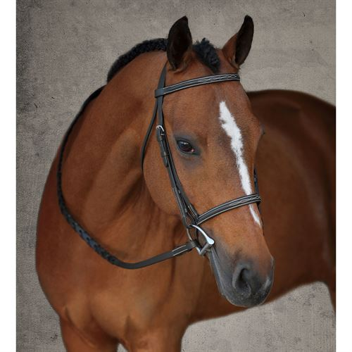 CROWN PONY BRIDLE
