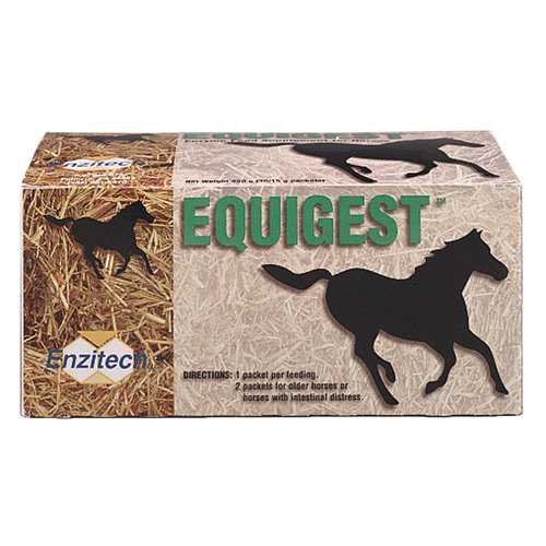 Equigest Digestive Supplement