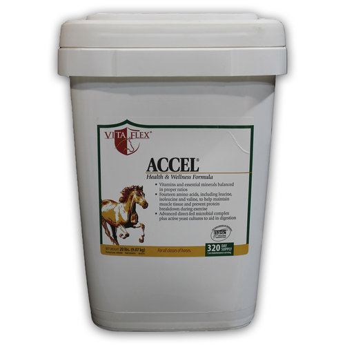 Vita-Flex Accel Vitamin Supplement