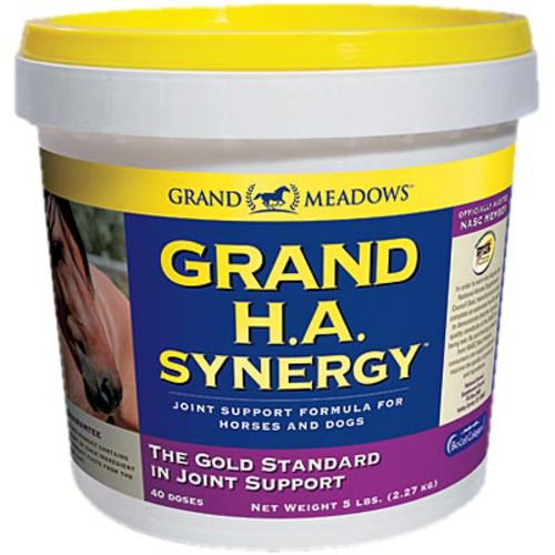 GRAND HA SYNERGY