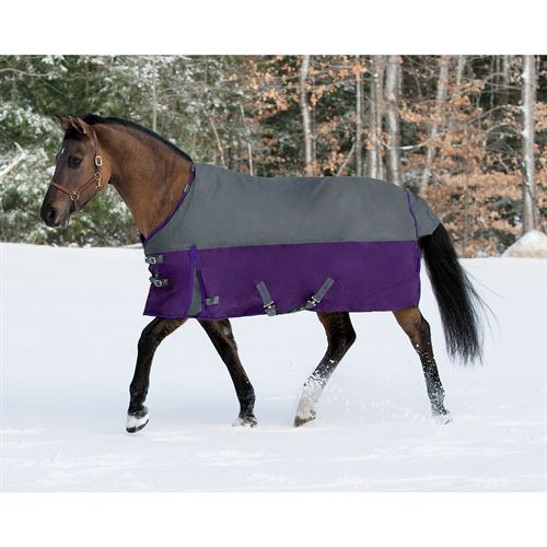 Riders International NorthWind Heavy Turnout Blanket