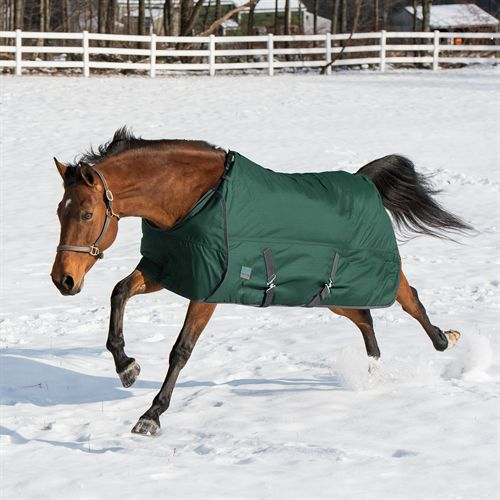 Lightweight turnout blanket from Riders International