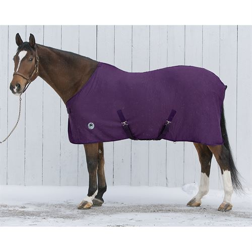 CENTAUR TURBODRY SHEET